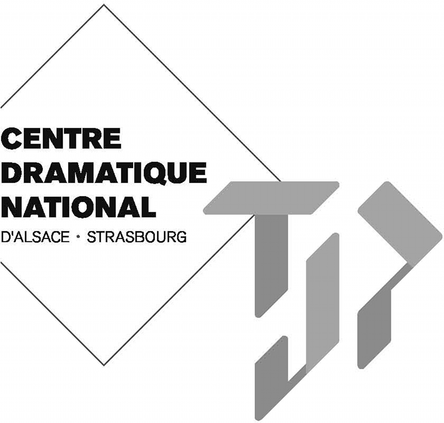 Le Tjp Centre Dramatique National D Alsace Strasbourg Recrute Un