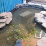 Осы жағынан, құбыр ыдысына салынған максималды деңгейден төмен, сондықтан су құйыңыз. Ол кәрізге әкелінді