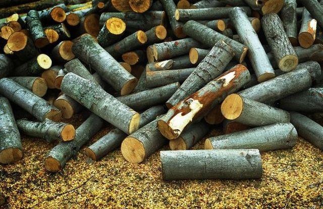 Осиновые дрова для бани применять невыгодно - невелика теплоотдача