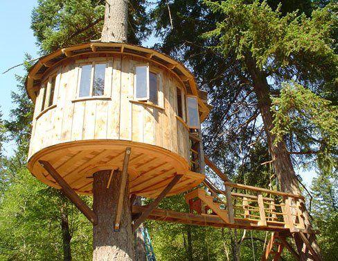 Maison sur un arbre avec vos propres mains