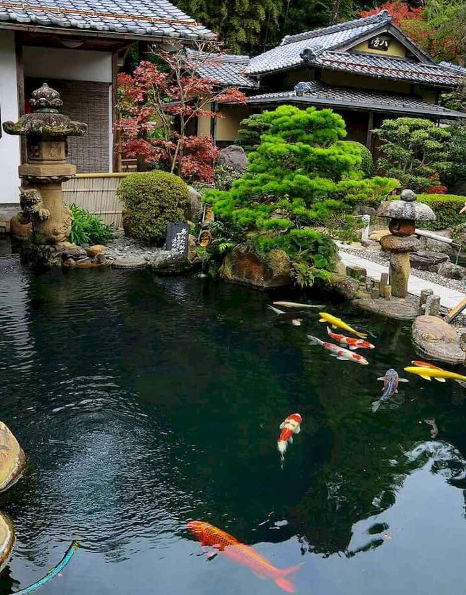 05 gorgeous backyard ponds and water garden landscaping ideas