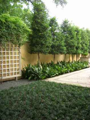 19 simple and cheap privacy fenceideas