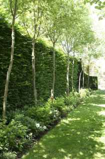 22 simple and cheap privacy fenceideas