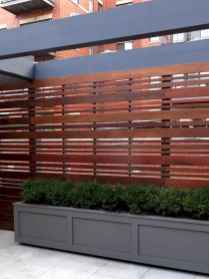 54 simple and cheap privacy fenceideas