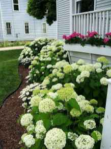 59 beautiful front yard landscaping ideas