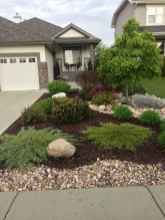 64 beautiful front yard landscaping ideas