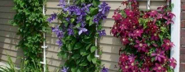 29 fabulous diy vertical garden design ideas