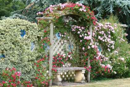 66 stunning small cottage garden ideas for backyard inspiration