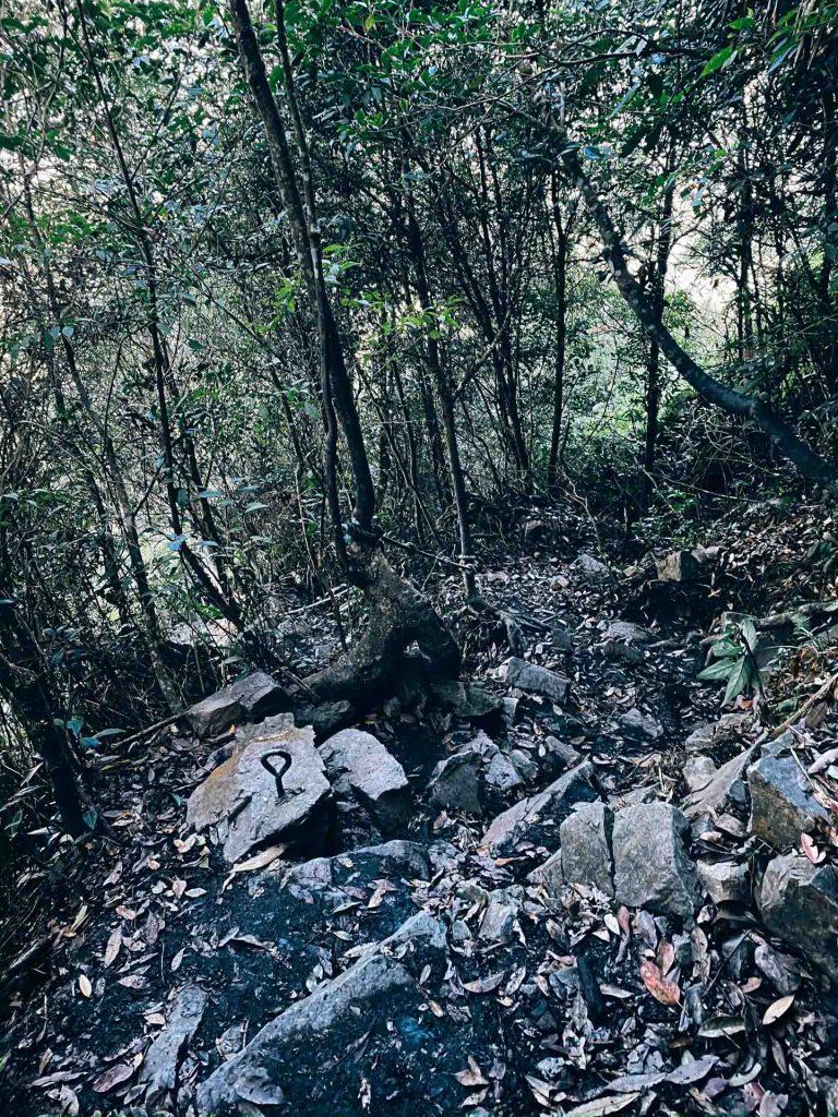 白毛山登山口