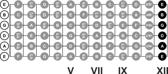 Notes at the 12th Fret