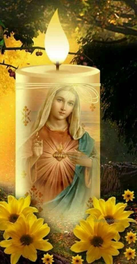 Immaculate Conception Monday
