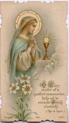 Immaculate Conception Thursday