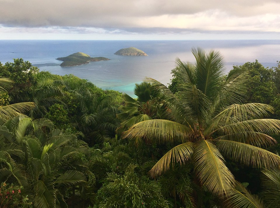 Clouds hover over the lush North Side of St. Thomas (Photo Kelsey Nowakowski)