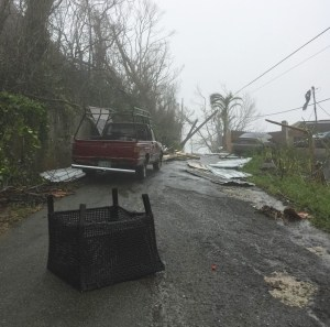 On St. Thomas, debris covers a road after Hurricane Maria (Kelsey Nowakowski photo)