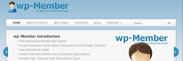 WP-Member The Wordpress Membership Plugin Sells On Flippa