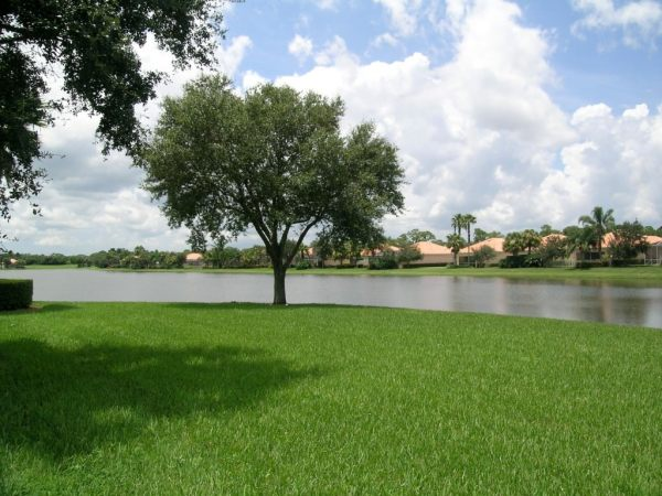 the Florida Club January 2018 Market Report