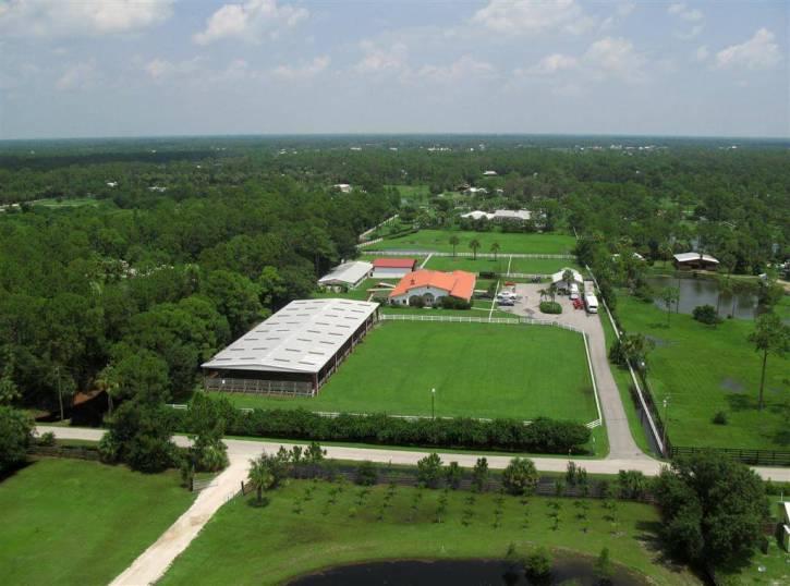 Palm City Farms real estate
