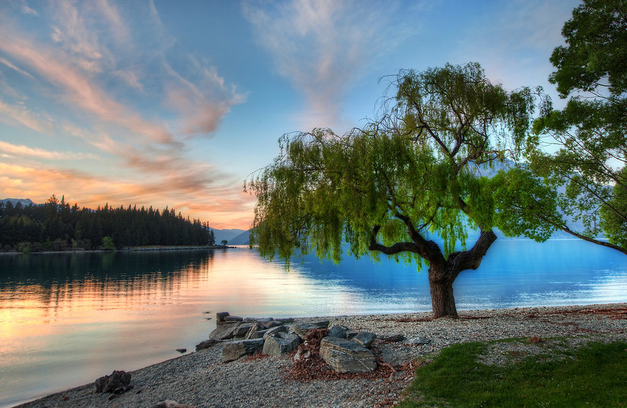 Tree at the Serene LakeQueenstown, I miss you!  The summer here in Texas has been bitter-hot.  I remember the long run I had along your shores...  comparing that with my 100-degree run here in Texas that just makes me want to curl up into a fetal ball and cry...When I was there in Queenstown, I took to waking up about an hour before the sunrise and brewing a whole pot of coffee.  And then, I would just the take the POT in the car with me and drive around.  The lake can be pretty still in the morning, and that is when I grabbed this one... I'm jealous of my friends Gordon Laing and Eden Brackstone who get to spend almost every day in these environs!- Trey RatcliffRead more here at the Stuck in Customs blog.