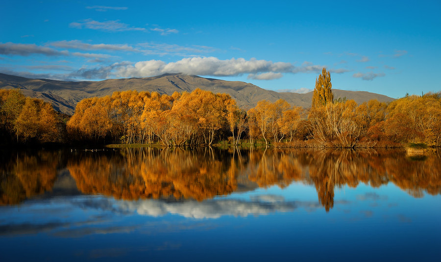 Unbelievable Colors in Queenstown and Arrowtown in the Autumn