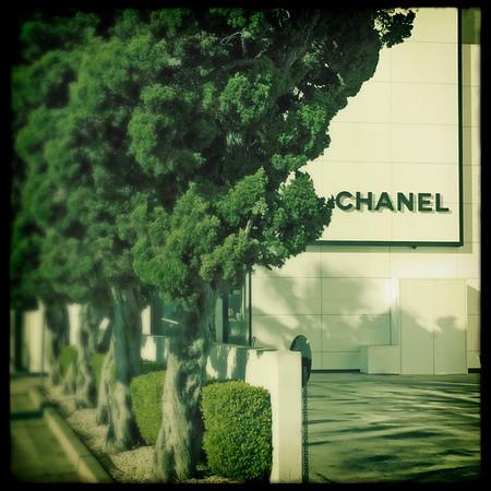 Beverly-Hills-Walk