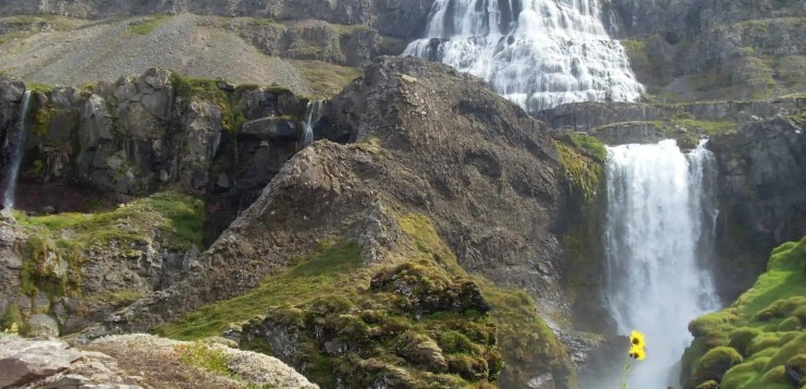 Dynjandi Waterfall in all of its glory in high sumer.