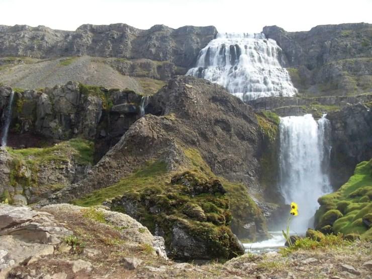 Dynjandi Waterfall in all of its glory in high sumer.