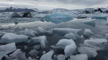 Jökulsárlón glacier lagoon is a big reason why I love Iceland!