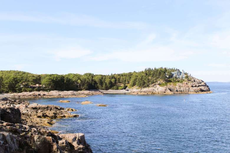 rocky coastline with trees at the ocean in Acadia National Park one of the best places to camp on the east coast