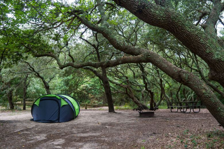 A tent among old winding oak trees at a great place to camp on the East Coast