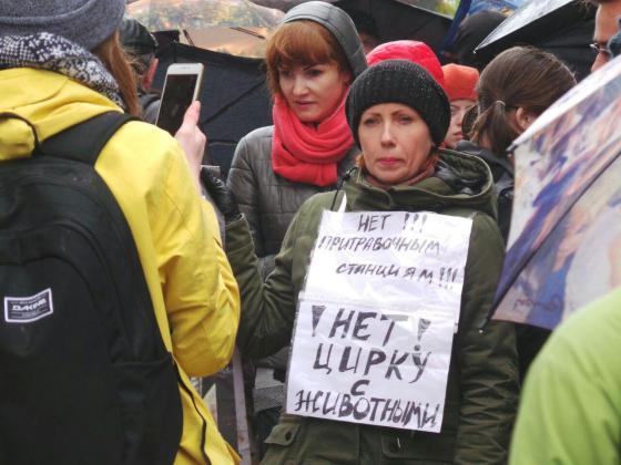 В Харькове митинговали за права животных 4