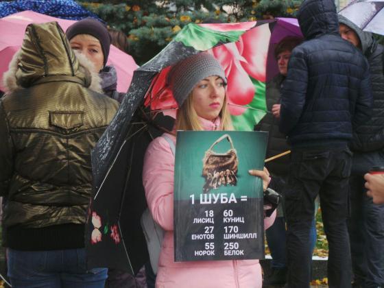 В Харькове митинговали за права животных 8