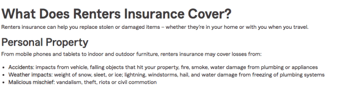 State Farm Renters Insurance Coverage