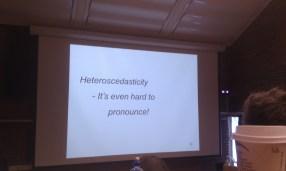 Bilde av heteroscedasticity