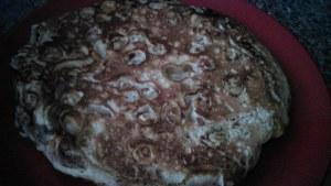 Cheerio Pancakes (American Style)