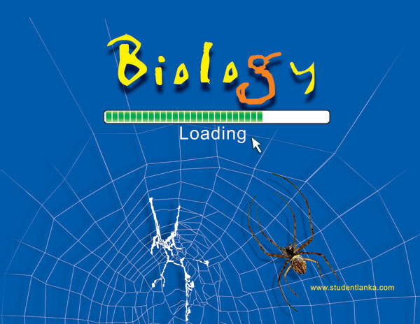 2019 – 2021 A/L Biology New Syllabus