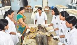 Institute of Indegenous Medicine, Rajagiriaya
