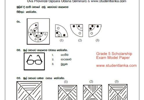 Grade 5 scholarship paper
