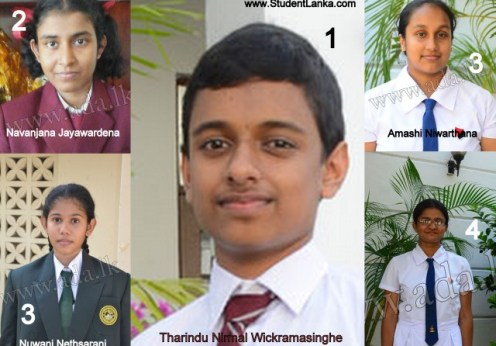 2014 O/L exam best students