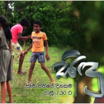 Download Popular Sinhala Teledrama songs