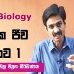Molecular Biology Hiran Amarasekera