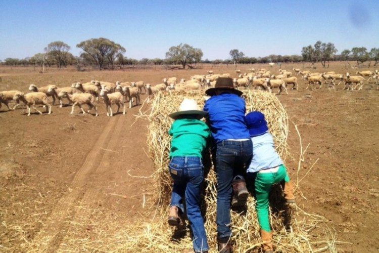 NSW Student Leaders to Inform Government on Drought