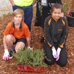 Cooinda Primary School Students Plant 1000 Trees