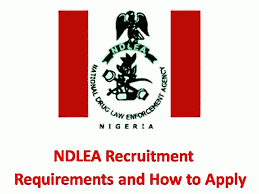 National Drug Law Enforcement Agency, NDLEA Recruitment requirements and how to apply