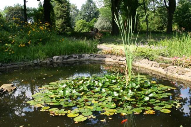 Муниципальный Ботанический сад