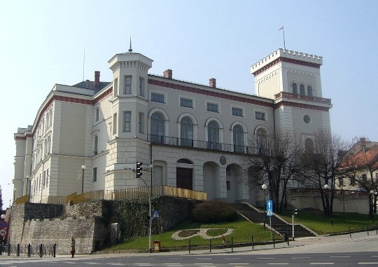 Замок князей Сулковских
