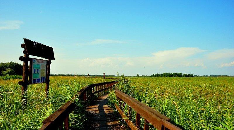 Нарвянский национальный парк