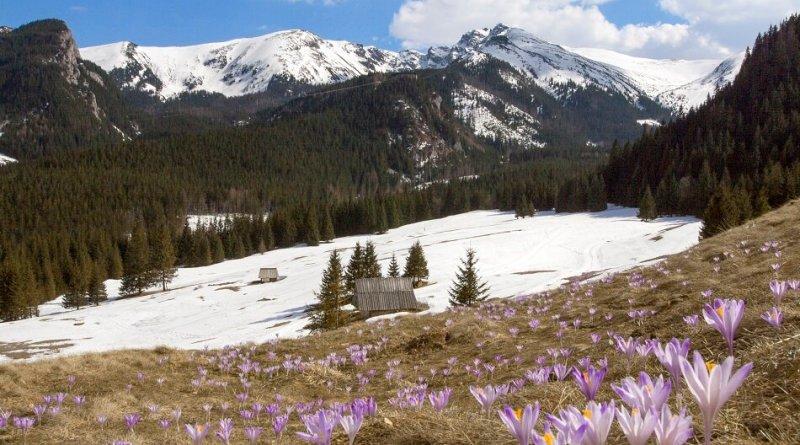 Весна в Татрах