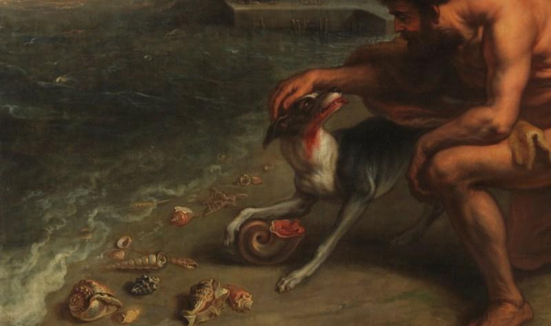 A hungry dog discovers purple.