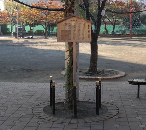 Tsugaru-no-taiko_2009-11