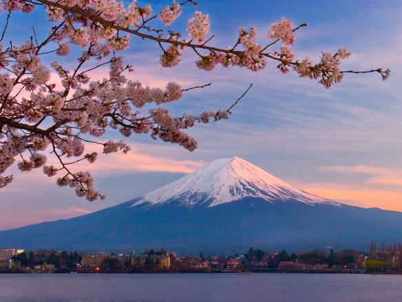 Mount Fuji and Kawaguchi Lake, with cherry blossom branch